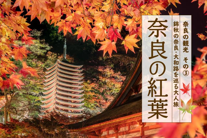 奈良の紅葉・黄金色に輝くススキ