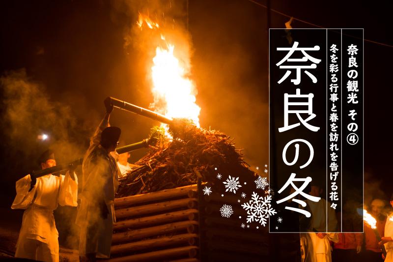 奈良の冬・冬を彩る行事と春を訪れを告げる花々
