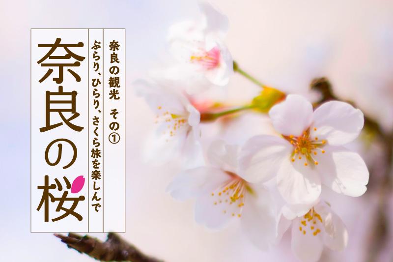 奈良の桜「ぶらり、ひらり、さくら旅を楽しんで」