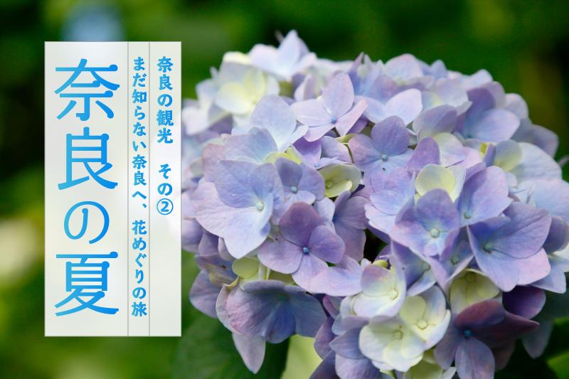 奈良の夏「まだ知らない奈良へ、花めぐりの旅」