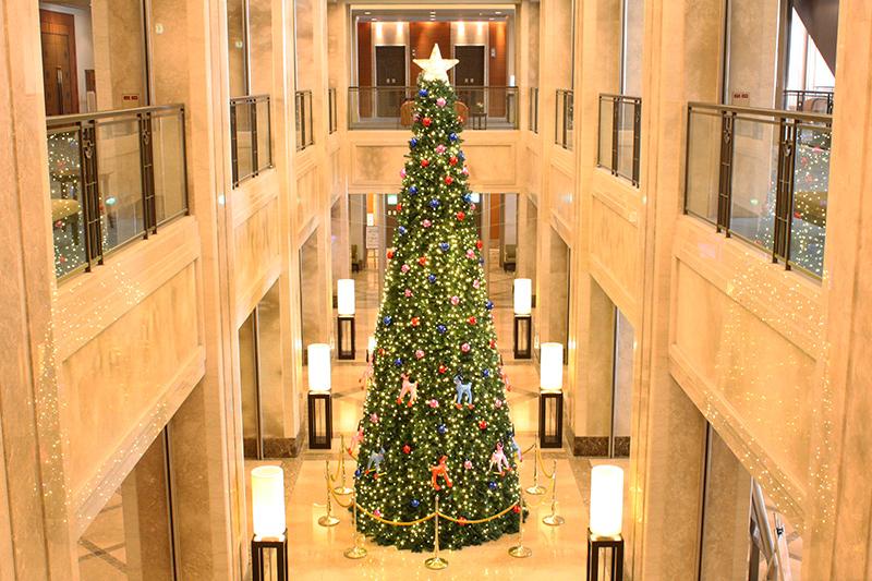 高さ6メートルのクリスマスツリー登場