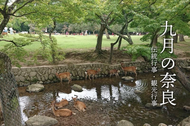 9月の奈良 伝統行事・観光行事・イベント